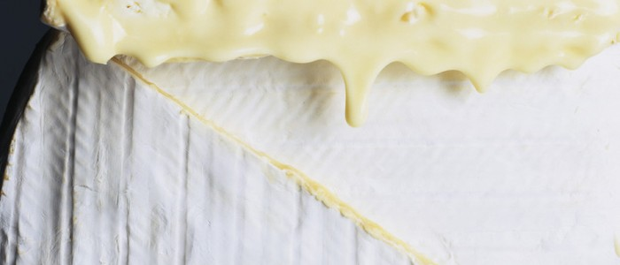 «Dis-moi quel fromage tu manges, je te dirai qui tu es» : un article à lire d'urgence !