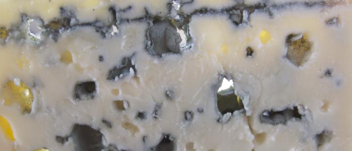 Une vidéo surprenante sur la formation des fromages